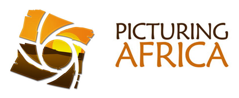 Picturing Africa